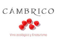 Cámbrico Vino ecológico